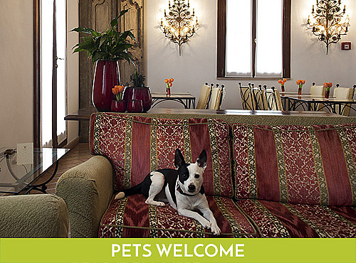 Pets Friendly Hotel Columbia Roma