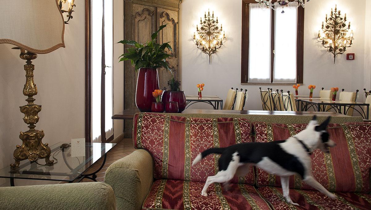 Hotel che accettano cani a Roma